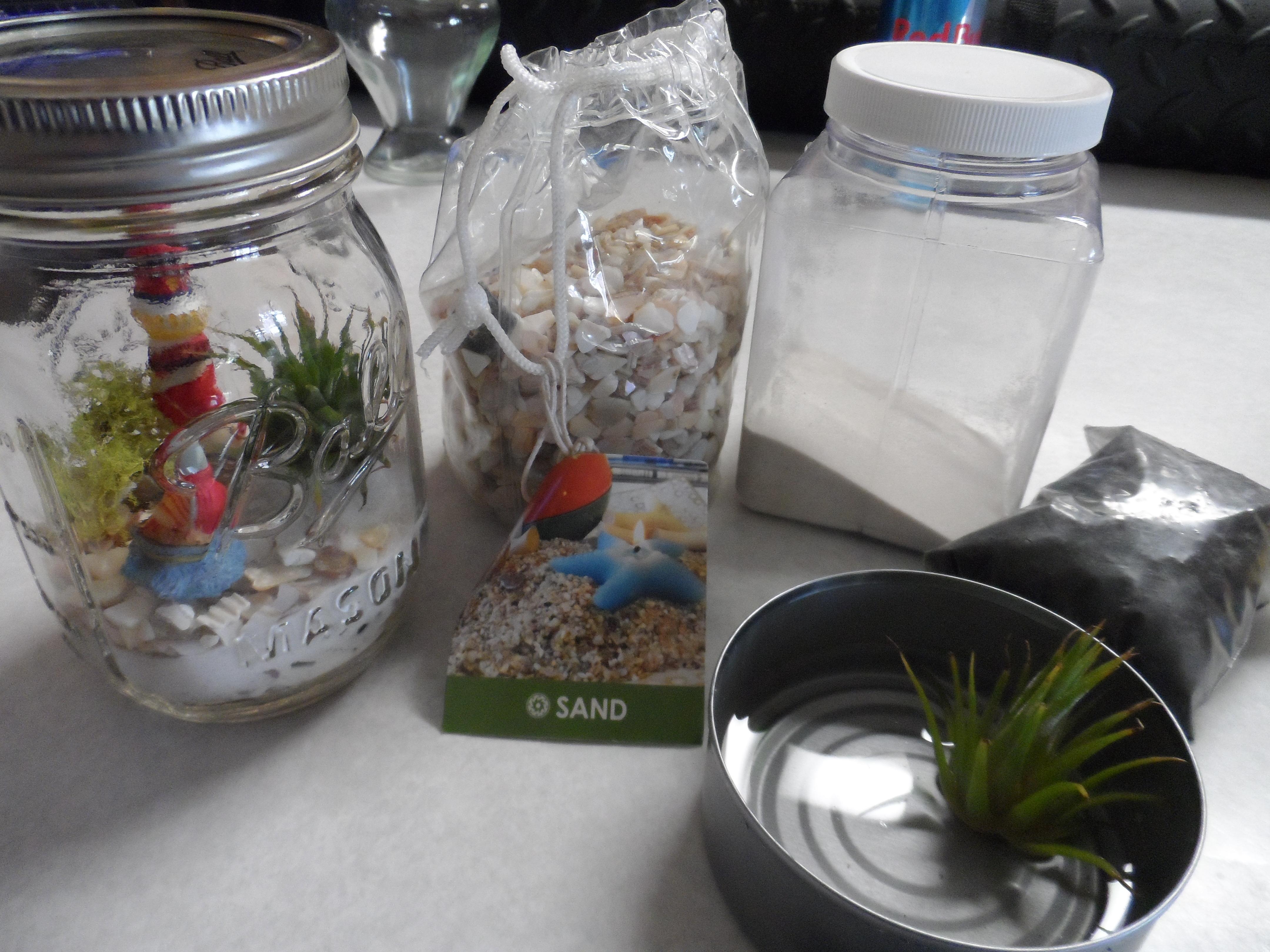 Mason Jar Miniature Garden Terrarium Kit Brendakyle